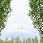 https://paris2.global-coding.com/paris/company_m/lhcd5oktvk3t04pv37empr9vll.jpg,La-vie Photography パリ